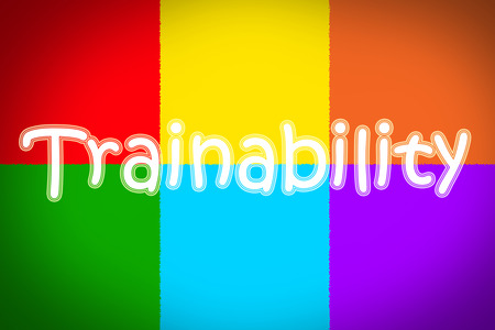 able to learn: Trainability Concept text on background