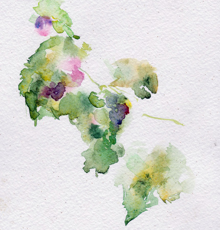 paysage: watercolor grapes