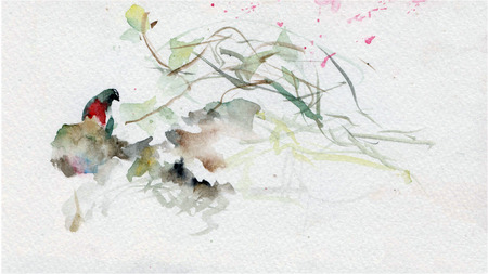 spring: watercolor japan bird