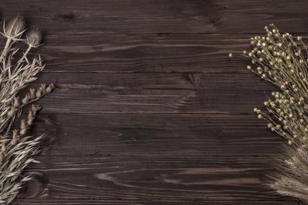dried herbs: dried herbs on a wooden board retro