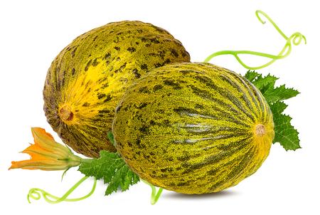 melon isolated on white background 版權商用圖片