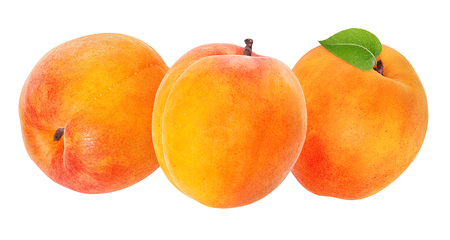 apricot isolated on white background Stockfoto