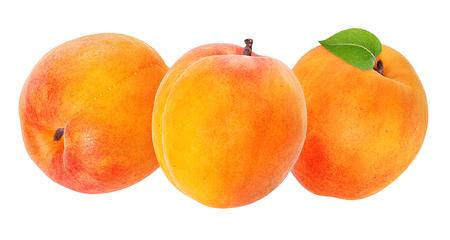 apricot isolated on white background Archivio Fotografico