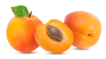 apricot isolated on white background 写真素材