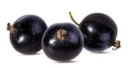 black currant  isolated on white Reklamní fotografie - 100544893
