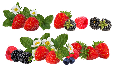 Berries collection. Raspberry,strawberries, blueberry, blackberry  isolated on white.