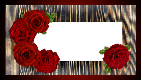 Red rose  frame on a wooden board, Valentine's day concept Reklamní fotografie - 116190074