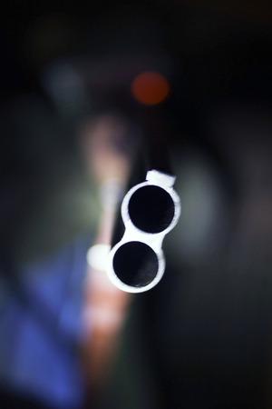 fusil de chasse: Fusil de chasse, arri�re-plan flou Banque d'images