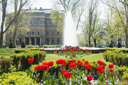 finery: Tulips in Zrinjevac park Croatian Academy of Science and Arts