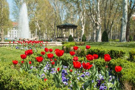Tulips and music pavilion in Zrinjevac park in Zagreb, Croatia