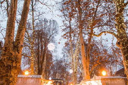 advent time: Advent time in the center of Zagreb, Croatia, trees decorated with lights in Park Zrinjevac