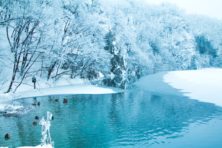 Frozen lake and trees in nature park Plitvice, Croatia