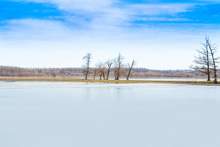 Beautiful winter landscape in countryside, frozen lake surface in nature park Lonjsko polje, Croatia