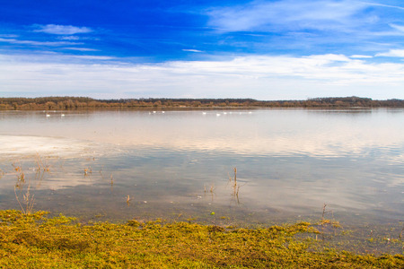 Beautiful winter landscape in countryside, lake surface in nature park Lonjsko polje, Croatia