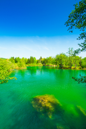 Panoramic view on beautiful green water surface on Mreznica river, Belavici, Croatia 版權商用圖片 - 101252951