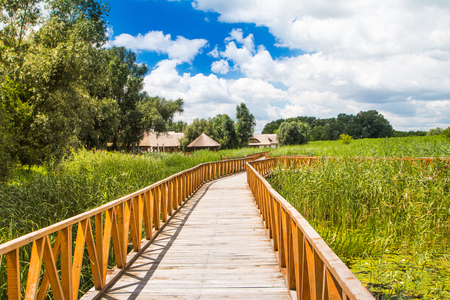 Wooden path in nature park Kopacki rit in Slavonia, Croatia, popular tourist destination and birds reservation 写真素材