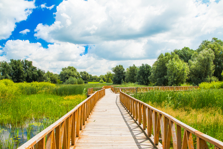 Kopacki rit nature park, wooden path, Slavonia, Croatia, popular tourist destination and birds reservation