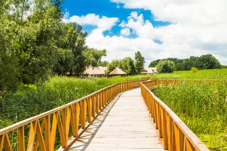 スラボニア、クロアチア、人気の観光地や鳥の予約で自然公園コパッキリットの木道