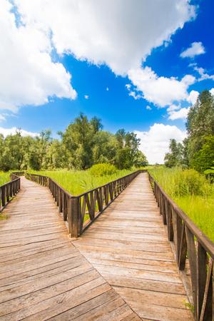 Kopacki rit, Baranja, Croatia, wooden path in nature park in popular tourist destination and birds reservation