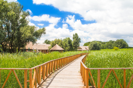 Kopacki rit, Baranja, Croatia, wooden path in nature park in popular tourist destination and birds reservation 写真素材