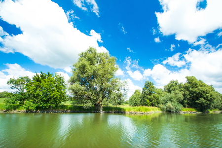 Croatia, Baranja, Slavonia, Kopacki rit nature park, popular tourist destination and bird reservation, beautiful green water landscape