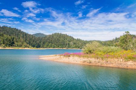 Beautiful lake shore lagoon and evergreen wood, colorful mountain landscape, Lokve, Gorski kotar, Croatia 스톡 콘텐츠