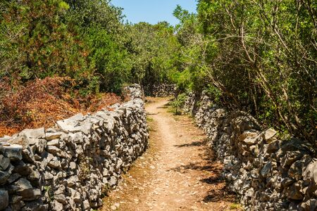 Old path in Dalmatia, Croatia, aged dry stone wall (suhozid), a construction typical for countryside in Croatia