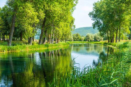 Beautiful Gacka river flowing between trees and fields, summer view, Lika region of Croatia