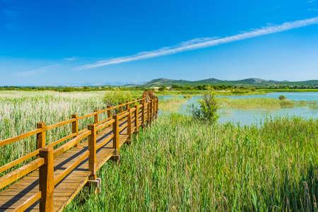 Nature park Vrana lake (Vransko jezero), Dalmatia, Croatia, wooden path in observation park Stock fotó