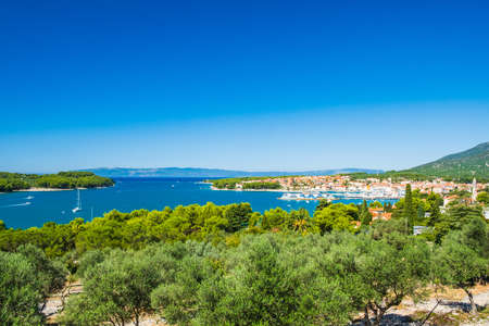 Olive trees and panoramic view of town of Cres on the island of Cres in Croatia, beautiful Adriatic seascape