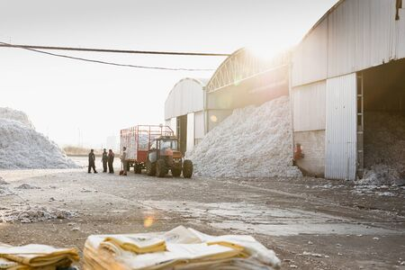 Cotton farmer waiting for the tractor trolley to get unloaded in the ginning mill in Greece Stock Photo