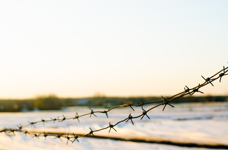 Coiling wire on the background of the evening sky and the farm field. Concept of restraint of freedom, conclusion. It is protected by private property. Forbidden zone, do not enter. farm