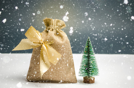 A bag of money with the Christmas tree. Christmas shopping and preparing for the holiday. The accumulation of money for gifts. New Year's holidays. Christmas Sale and discounts Stock Photo
