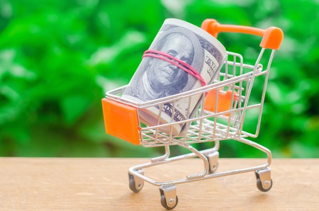 supermarket trolley on a green background. The concept of shopping online. Place market, commerce, Internet commerce. Ordering goods and services through the network, payment in electronic form.