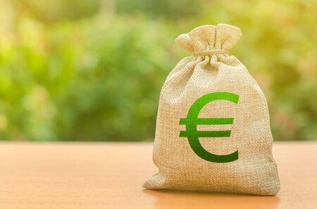 Bolsa de dinero con el símbolo del euro sobre un fondo de naturaleza. Negocios, presupuesto, transacciones financieras. Préstamos y subsidios disponibles, apoyo gubernamental. Atraer inversiones para el desarrollo y la modernización.