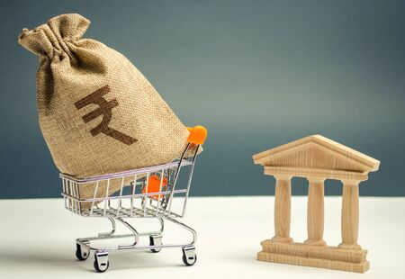 Indian rupees in a supermarket cart and a bank or government building. Business and finance concept. Investing in a bank. Deposit and loan. Help from the state. Subsidies and Benefits. Rupiah. Budget