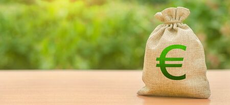 Money bag with Euro symbol on a nature background. Attracting investment to development and modernization. Available loans and subsidies. Business, budget, financial transactions. Stok Fotoğraf