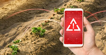 A phone and a warning sign on the background of young sprouts of potatoes make way from under the earth. use of harmful pesticides and chemicals in agriculture. presence of microplastics in the crop