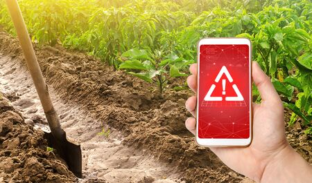 A phone and a warning sign on the background of pepper plantation and irrigation channel with a shovel. Harmful pesticides and chemicals in agriculture. Environmental hazard, microplastics in the crop