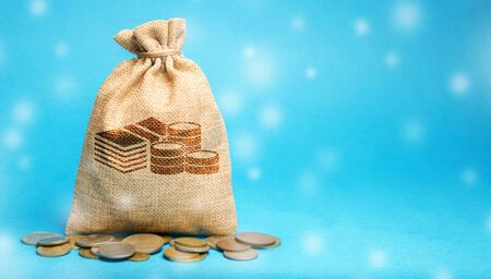 Money bag with coins and snowfall. Business and finance. Loans, deposit, credit. New Year promotions and Christmas. Accumulation of money. Savings. Winter season
