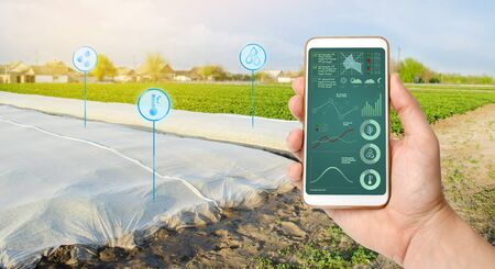 Growing vegetable. Spunbond to protect against frost and keep humidity of vegetables. Small greenhouses. Farming and smart agriculture. Data analyzing on plants status.