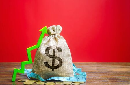Money bag with coins and up arrow. The concept of a successful business. Increase profits and capital. Budget and income growth. Dollar, dollars. Measuring tape