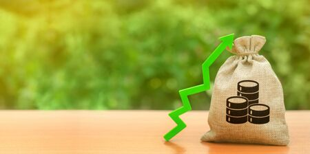 Money bag and a green arrow up. Stability, prosperity. Strengthening of national currency, revaluation, investment attractiveness. Economic growth. Deposit interest rate rise, cheap loans.