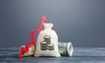 Bolsa de dinero, rollos de paquete de efectivo y flecha roja hacia arriba. Altos beneficios, superbeneficios. Inversiones. Prosperidad de la riqueza. Aumento de las ganancias de los ingresos. Depósitos favorables. Préstamos baratos, desarrollo empresarial de crecimiento económico.