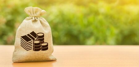 Money bag on nature background. Economics, salary. Business and industry, economic processes. Finance and budgeting, investments, bank deposit interest rates. Profit, income, earnings Stock Photo
