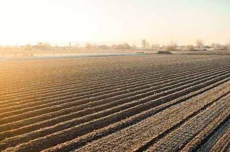 Winter farm field ready for new planting season. Preparatory agricultural work for spring. Agriculture and agribusiness. Choosing right time for sow fields plant seeds, protection from spring frosts.