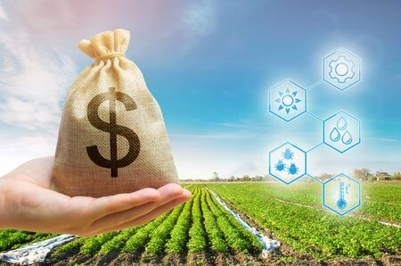Money bag on the background of agricultural crops in the hand of the farmer. Agricultural startups. Profit from agribusiness. Lending and subsidizing farmers. Grants and support. Land value and rent.