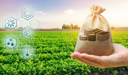 Money bag on the background of agricultural crops in the hand of the farmer. Agricultural startups. Profit from agribusiness. Development of innovation and research agriculture. Investing in farming.