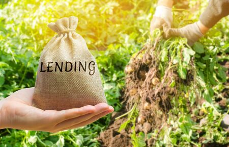 Money bag with the word Lending on the background of potato harvesting. The concept of agricultural lending. Taking a loan for the purchase of materials and equipment for agricultural farming. Farm 版權商用圖片