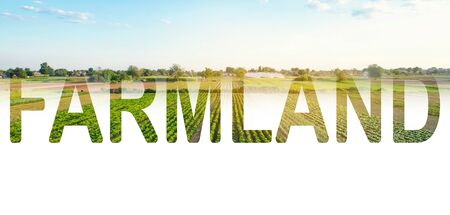 Word inscription Farmland on background of agricultural plantation field. Agroindustry and agribusiness. Cultivation and production of farm food products. Beautiful countryside view. Farming